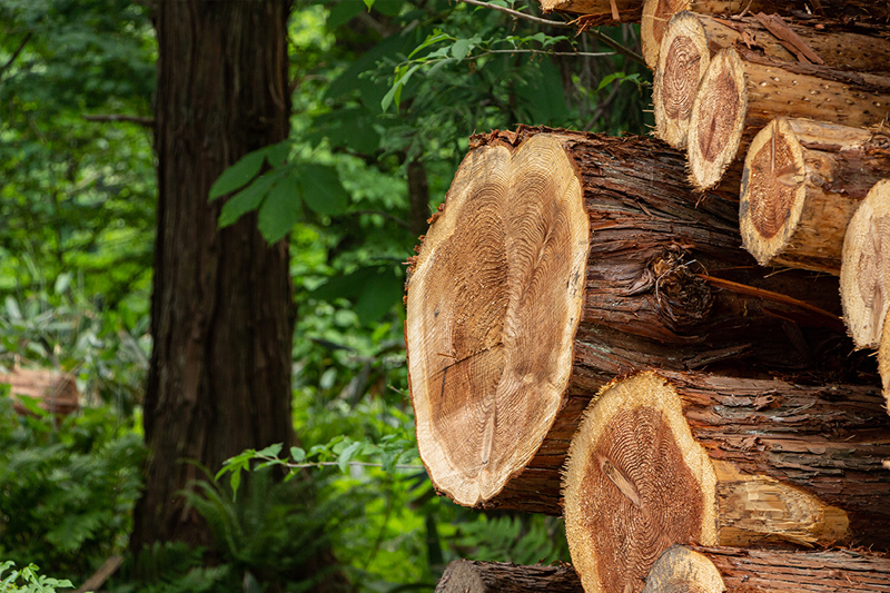 地元産の木材